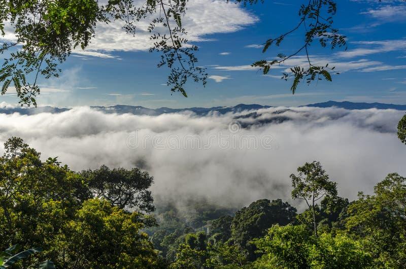 Niebla hermosa en el sur de Tailandia fotografía de archivo libre de regalías