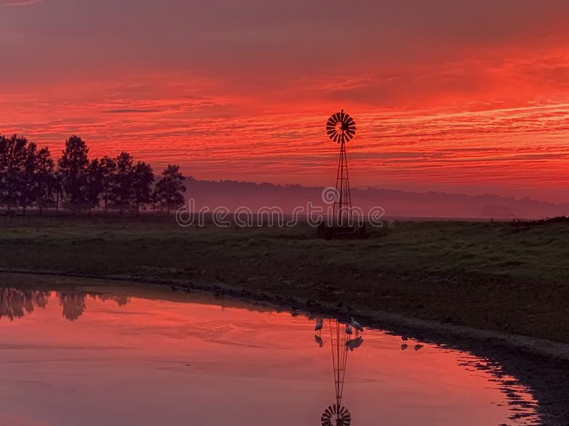 Niebla ligera de la mañana, molino de viento, charca con el cielo rojo de la salida del sol en campo rural imagen de archivo libre de regalías