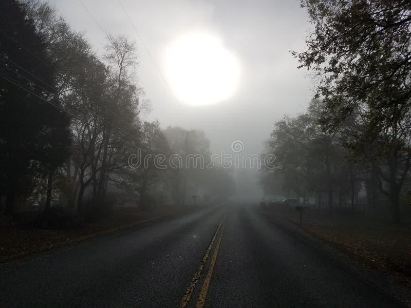 Niebla misteriosa de la mañana fotos de archivo libres de regalías