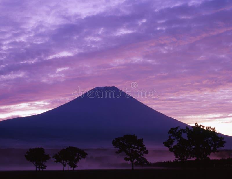 Niebla púrpura fotos de archivo libres de regalías