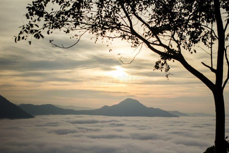 Niebla Phu Tok en Chiang Khan fotografía de archivo