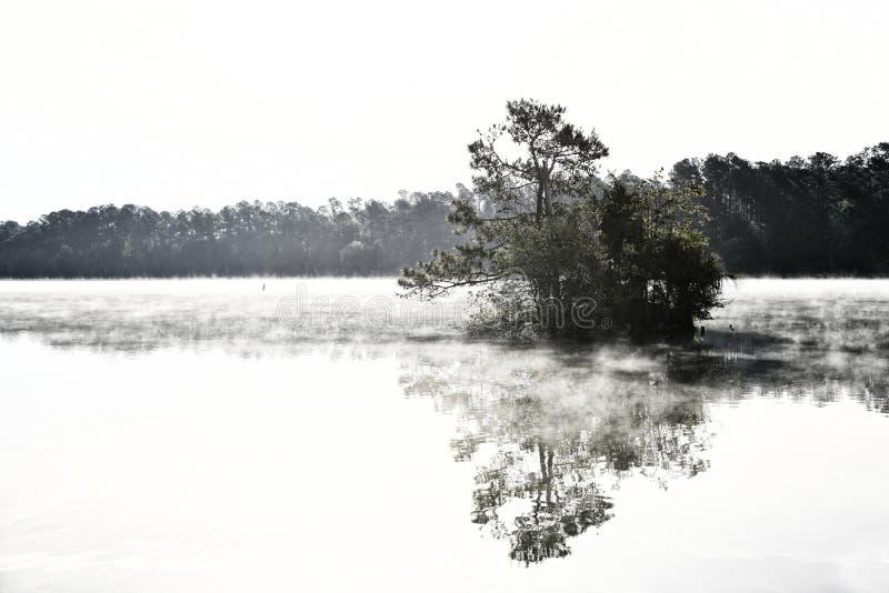 Niebla por la mañana temprano en el lago fotografía de archivo libre de regalías