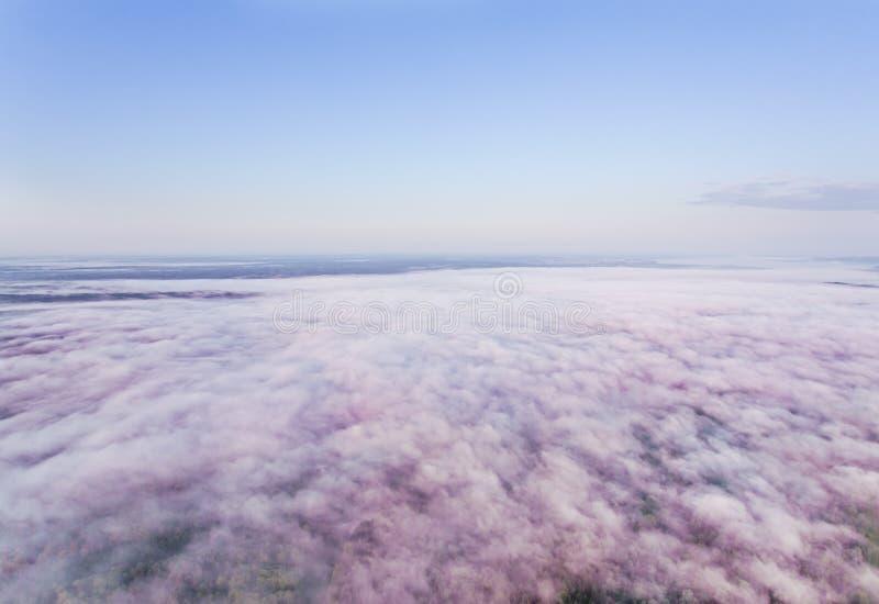 Niebla rosácea de la mañana imagen de archivo libre de regalías