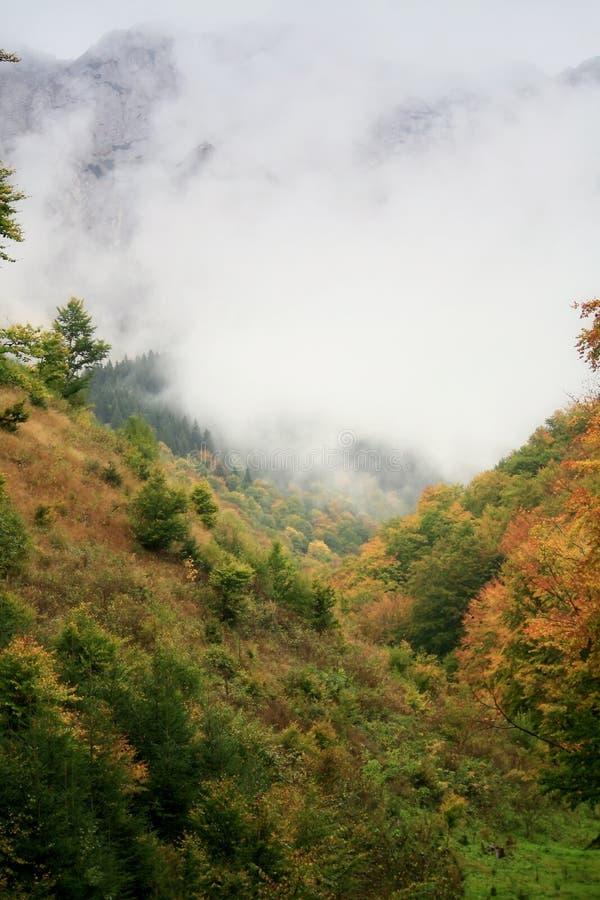 Niebla sobre el canto fotografía de archivo