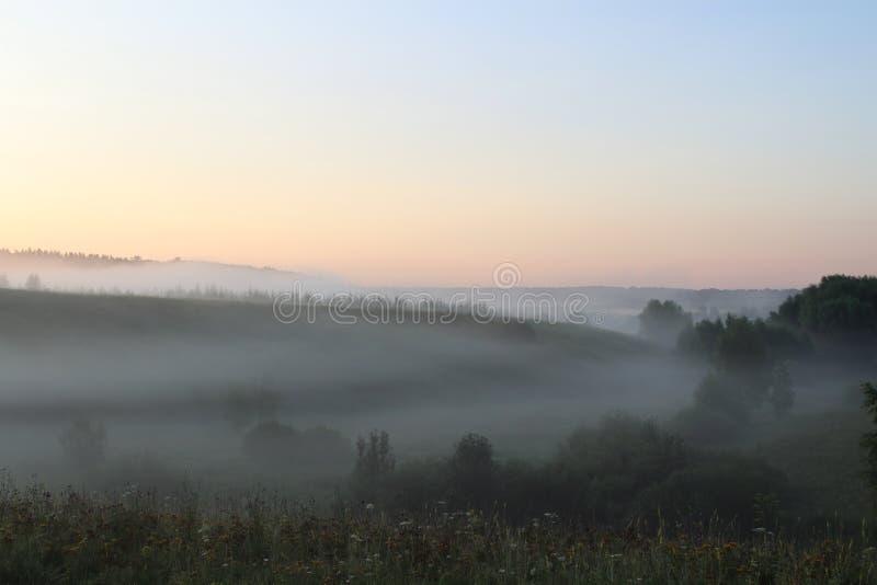 Niebla sobre el prado en la madrugada fotos de archivo