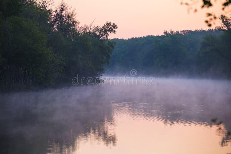 Niebla sobre un río de enrrollamiento reservado fotos de archivo libres de regalías
