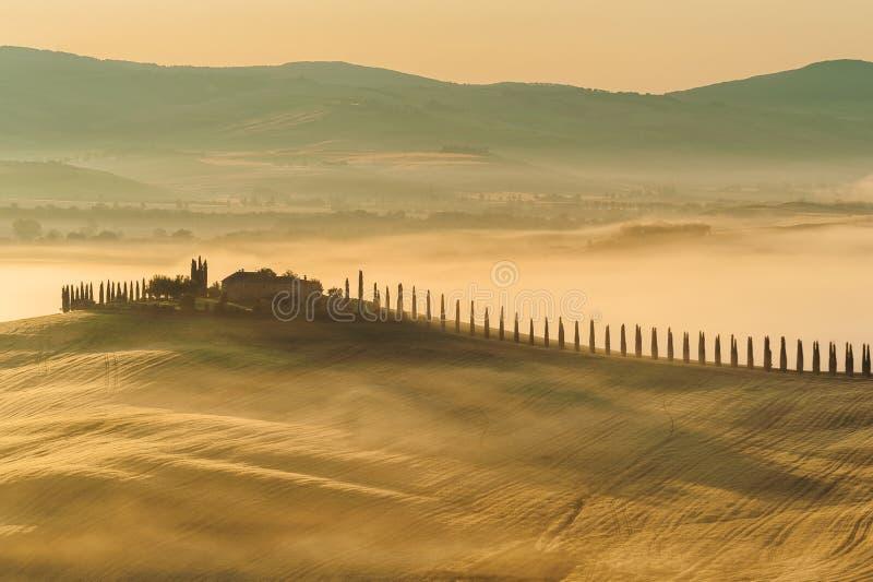 Niebla toscana en el campo rústico en la sol, Italia foto de archivo libre de regalías