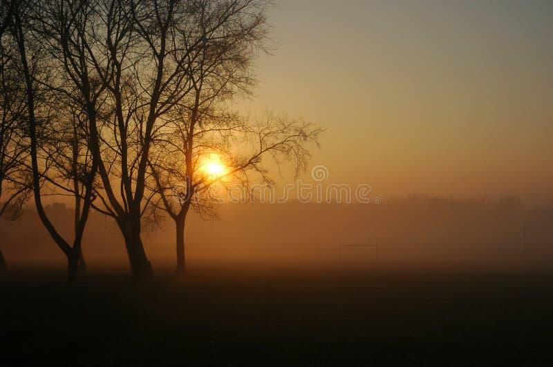 Niebla y puesta del sol en el parque fotografía de archivo