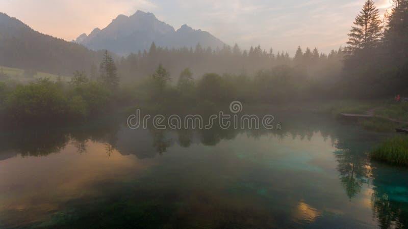 Nieblas de la mañana que suben sobre el lago del bosque imágenes de archivo libres de regalías