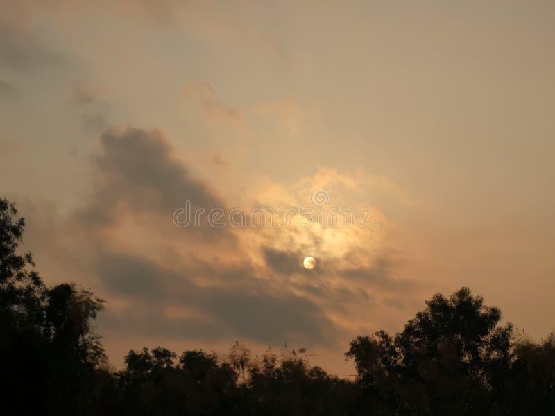 Niebo chmurzy słońce błyszczy tam jest chmurą w niebie i ocienia drzewa obrazy stock
