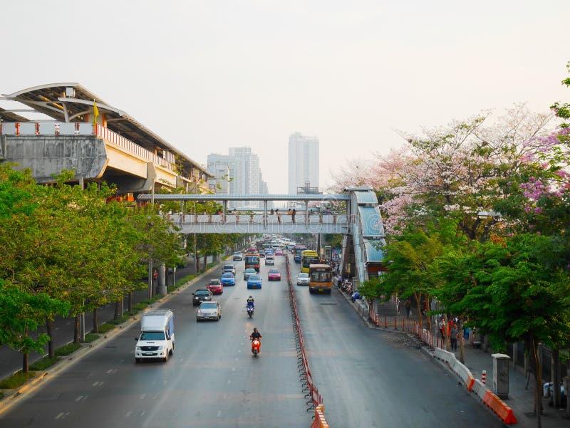 Niebo dworzec, ruch drogowy i tabebuia rosea drzewa wzdłuż ro, obrazy stock