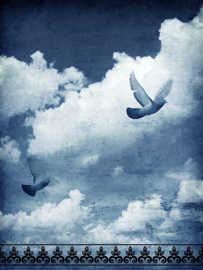 Niebo i gołąbki obrazy royalty free