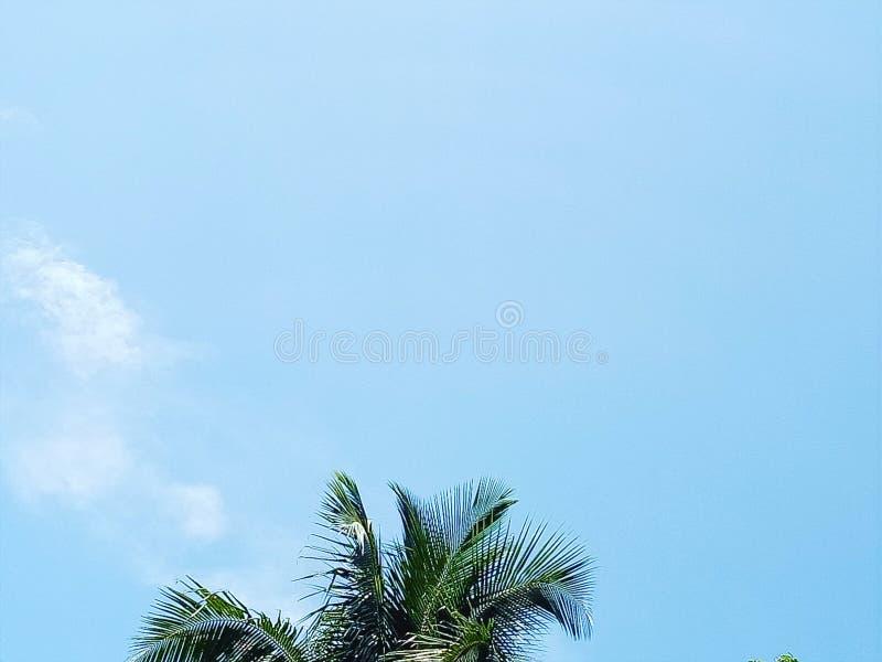 niebo jest błękitny i niektóre chmurę obrazy stock