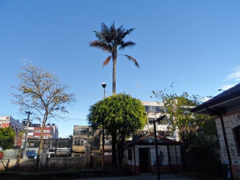 Niebo na Bogota uniwersytecie obrazy stock