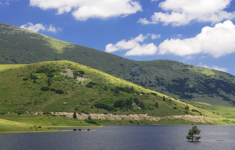niebo nad jeziorem zdjęcie royalty free