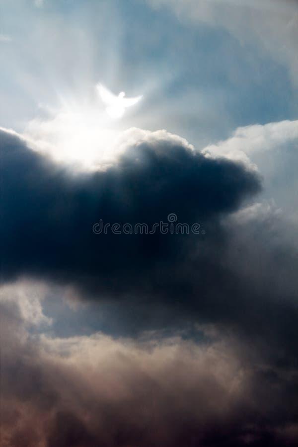 niebo nurkujący dramatyczny biel fotografia stock