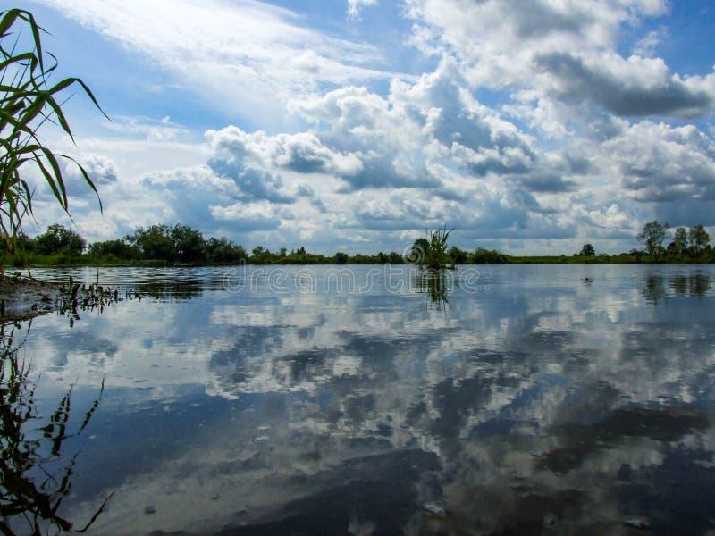 Niebo odbijał w wodzie pluskwy rzeka w Polska zdjęcia royalty free