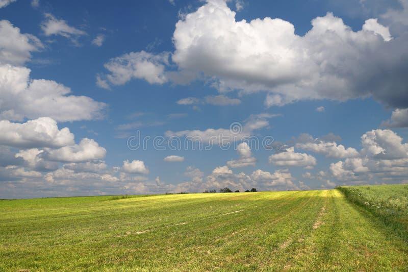 Niebo pełno kłębienie chmury Widok ampuł pola po fi obraz royalty free