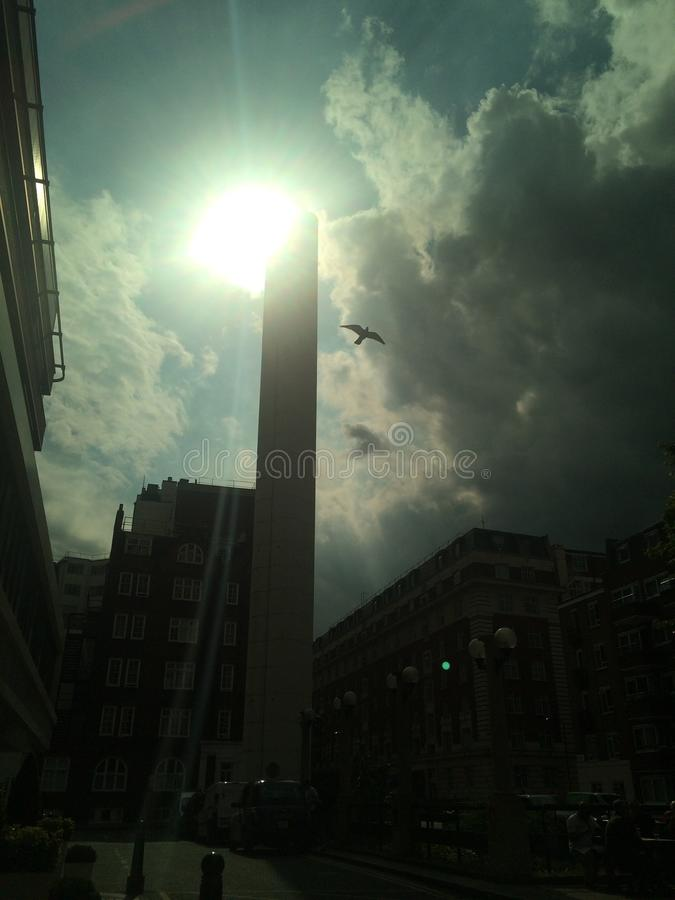 Niebo ptaka chmury moder obrazy stock