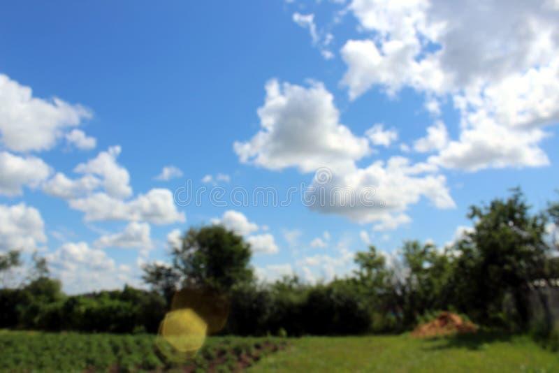 Niebo z udzia?u bielem chmurnieje nad lasowi drzewa Natura i wolno?ci poj?cie Zamazana fotografia zdjęcia royalty free