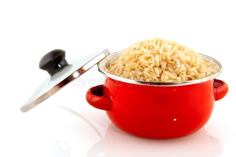 niecki czerwieni ryż fotografia royalty free
