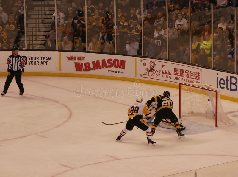 Niedźwiadki - pingwinu NHL hokeja cel obrazy royalty free