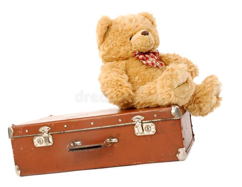 niedźwiadkowa walizka obrazy stock