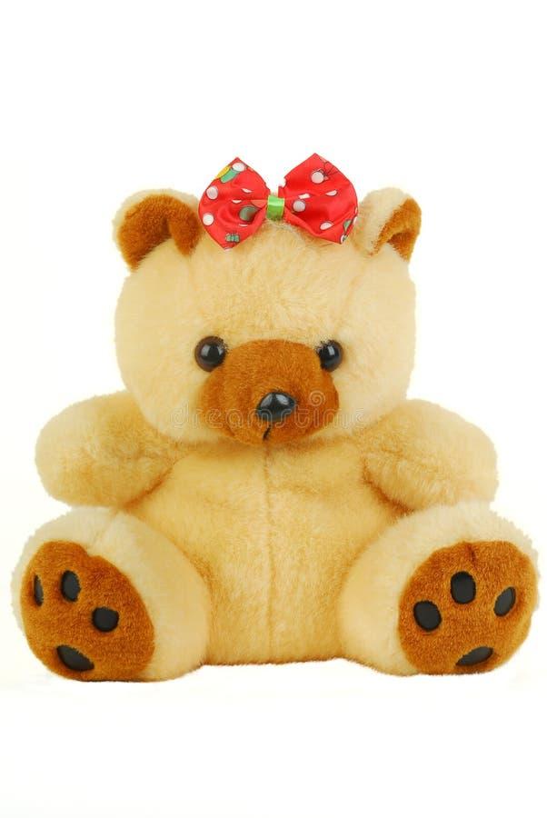 niedźwiadkowe mokiet zabawki obraz royalty free