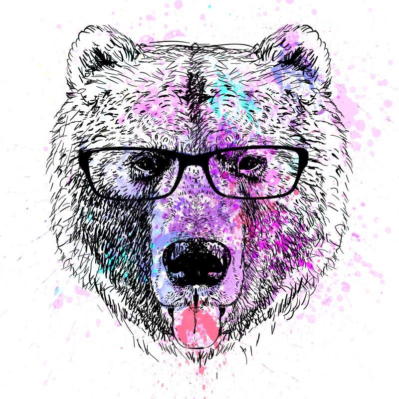 Niedźwiadkowego charakteru kolorowy portret ilustracja wektor