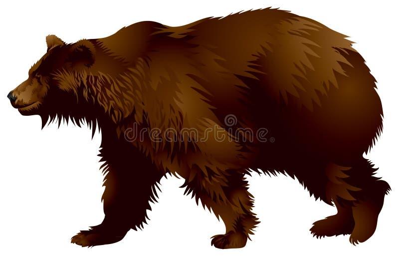 niedźwiadkowy brąz ilustracja wektor