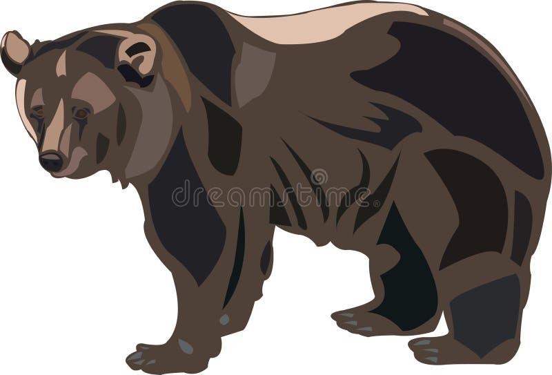 niedźwiadkowy grizzly ilustracja wektor