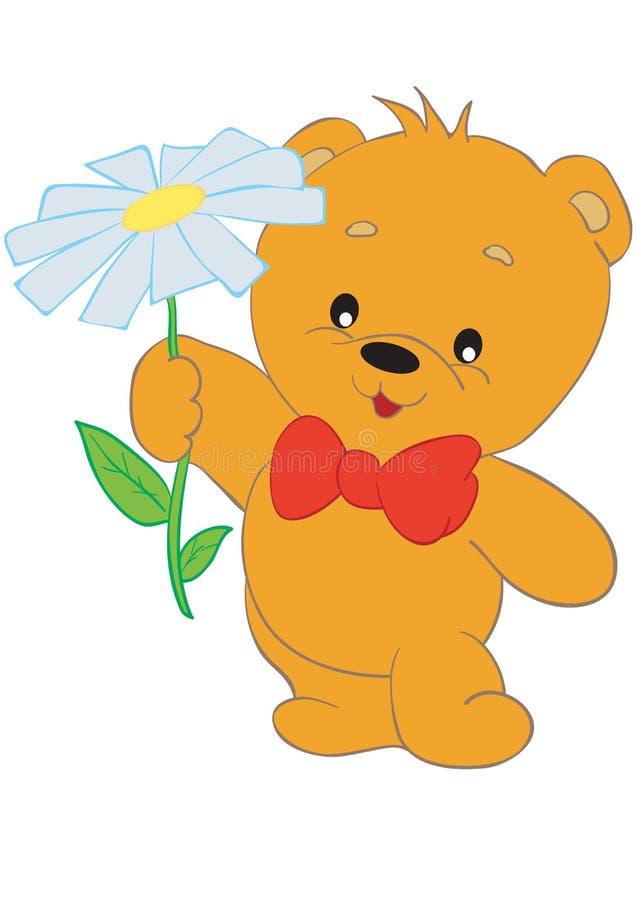 niedźwiadkowy kwiat ilustracja wektor