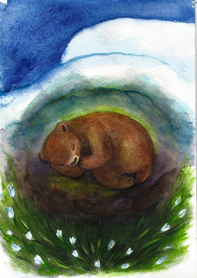Niedźwiedź śpi w melinie na śnieżyczkach, ilustracja royalty ilustracja