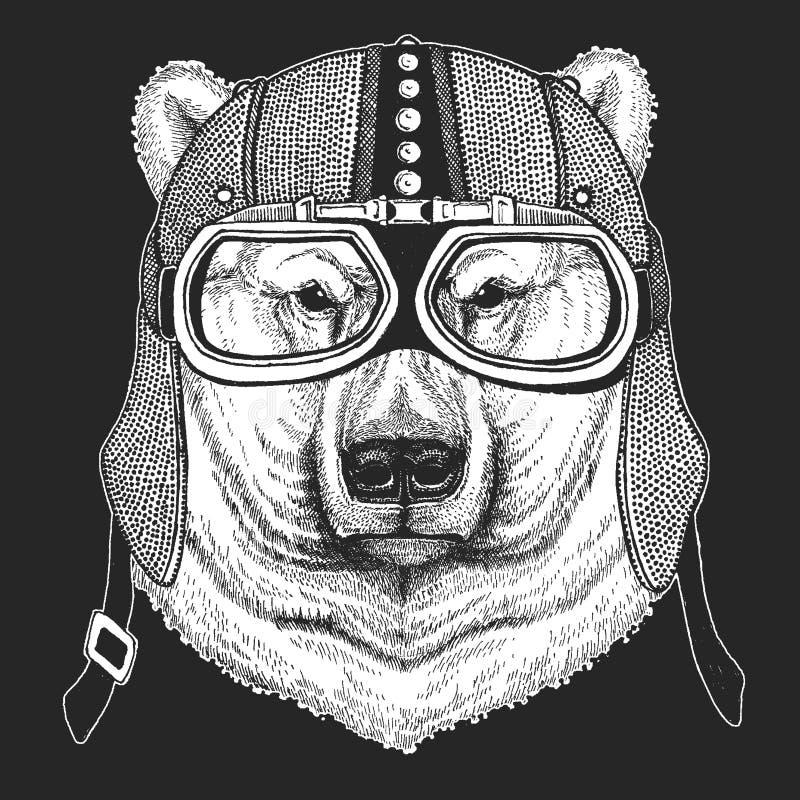 Niedźwiedź, niedźwiedź polarny Rocznika motocyklu hemlet Retro stylowa ilustracja z zwierzęcym rowerzystą dla dzieci, dzieciaki o ilustracji