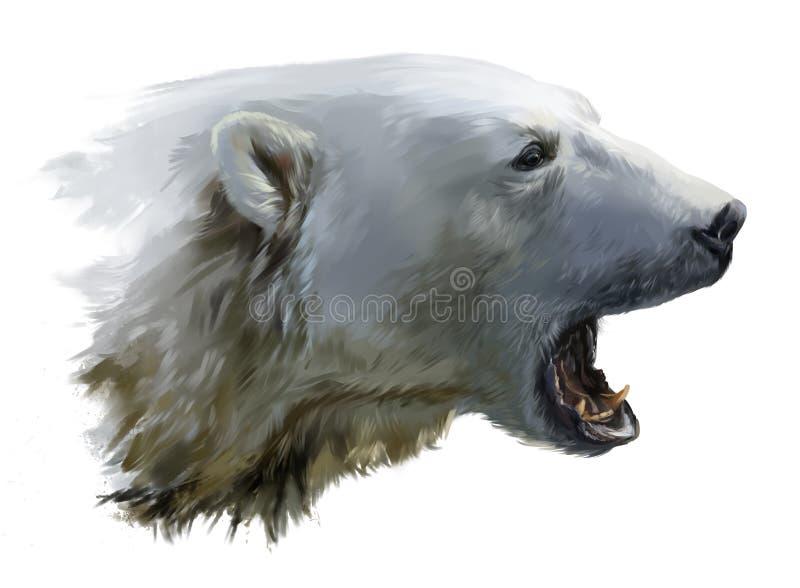 niedźwiedź polarny warczy ilustracja wektor
