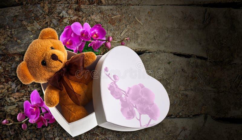 Niedźwiedź z orchideą w serca pudełku obraz royalty free