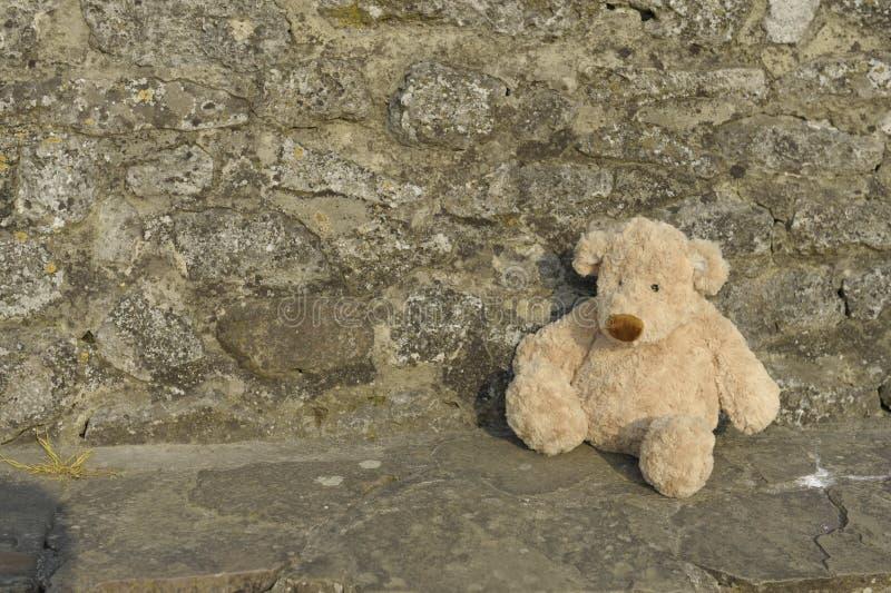 niedźwiedzia przegrany outdoors miś pluszowy zdjęcie stock