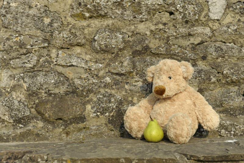 niedźwiedzia przegrany outdoors miś pluszowy zdjęcia royalty free