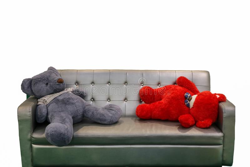 niedźwiedzie śpią na kanapy ławce w żywym pokoju i drewna podłogowym białym wa fotografia royalty free
