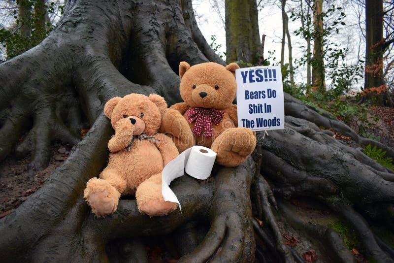 Niedźwiedzie Srali W drewnach obraz stock