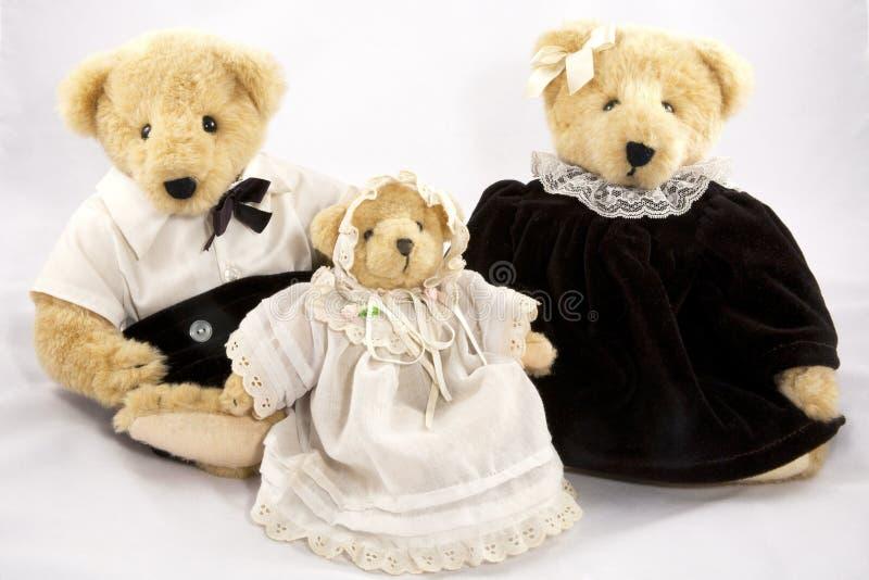 niedźwiedzie trzy obrazy royalty free