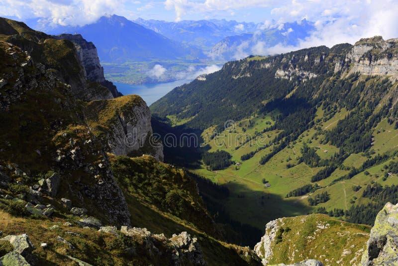 Niederhorn e lago Thun immagini stock libere da diritti