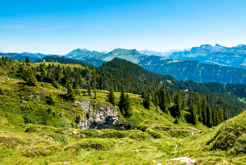 niederhorn panorama zdjęcie stock