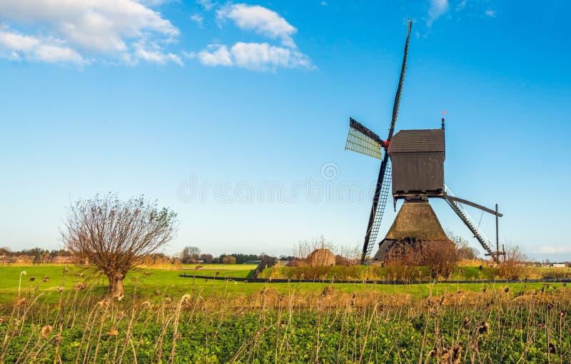 Niederländische historische hölzerne hohle Bockwindmühle, wie von der Seite gesehen stockbild