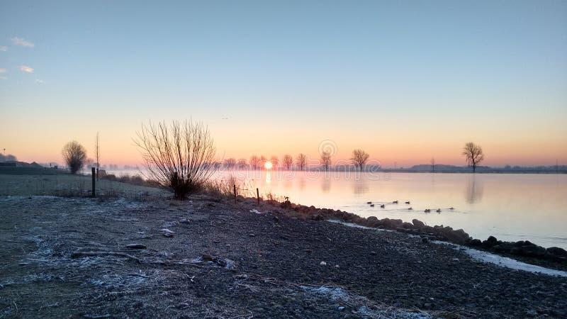 Niederländische Landschaft in Fluss Bergsche Maas lizenzfreies stockfoto