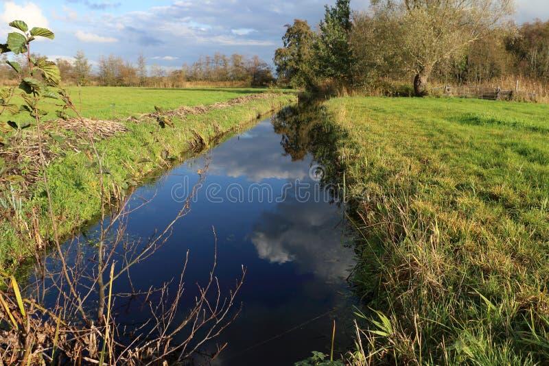 Niederländische Landschaft in Overijssel lizenzfreies stockfoto