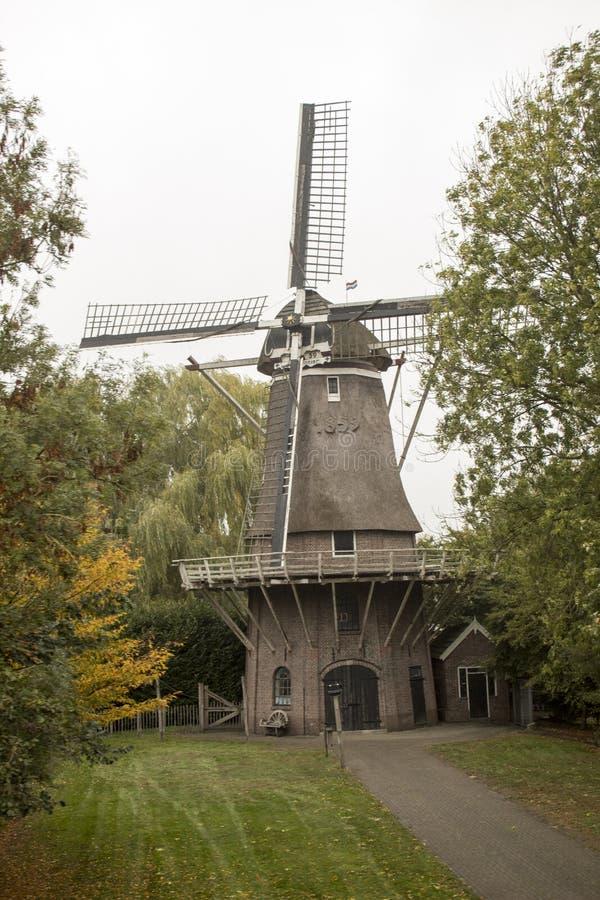 Niederländische Windmühle zwischen Bäumen lizenzfreies stockbild