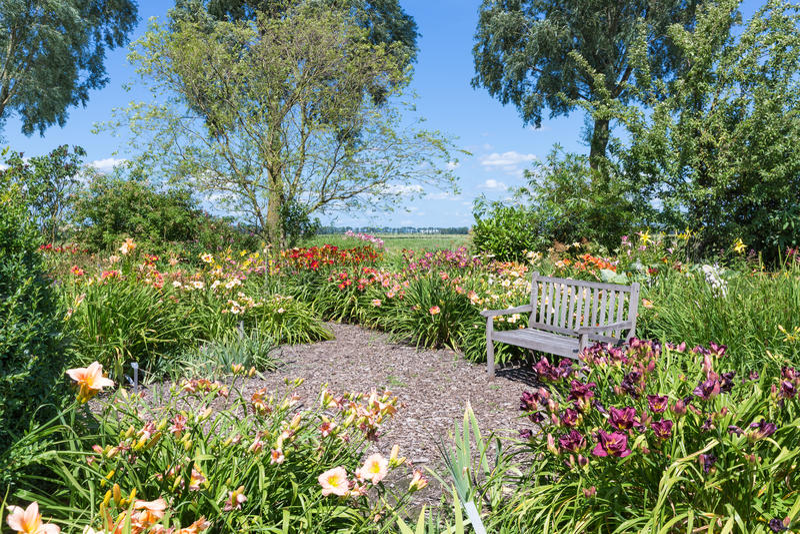Niederländischer blühender Garten mit einem Rückzug und einer Holzbank stockbild