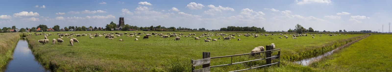 Niederländisches Ackerlandpanorama lizenzfreie stockbilder