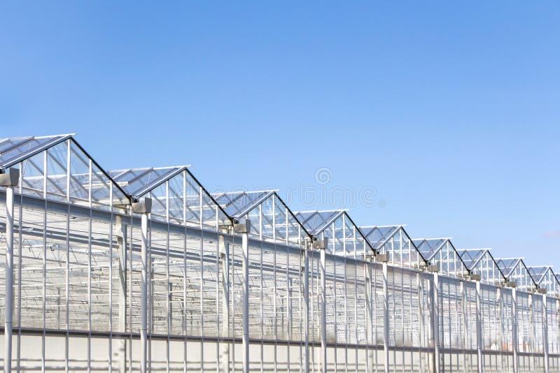 Niederländisches Grünes Haus Stockbild